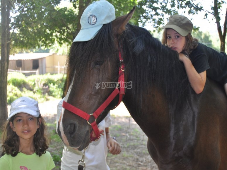 Kids with a horse