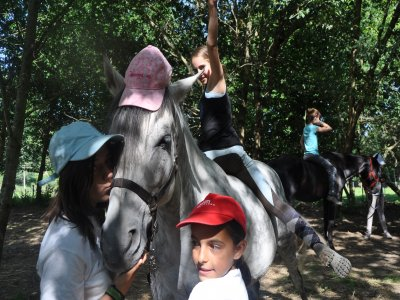 First contact with horses for kids, Orense