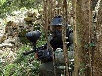 Stalking behind the trees