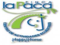 Hipica La Paca Campamentos Hípicos