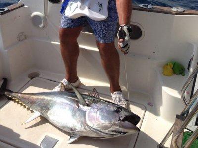 Pesca de atún al brumeo en Blanes 8 horas