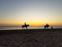 At sunset on the beach riding a horse