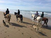 A caballo por la playa de Conil
