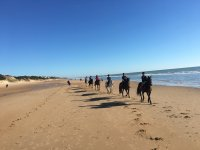 Group of friends on the horses on the shore
