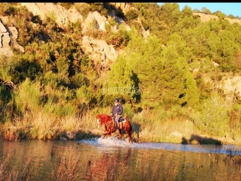 Disfrutando de un paseo a caballo por el río