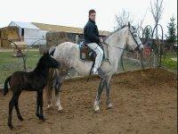 Oferta Montar a caballo en el Bajo Llobregat 2 horas