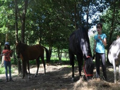 Learn horse riding in Esgos children 4 to 6 years.