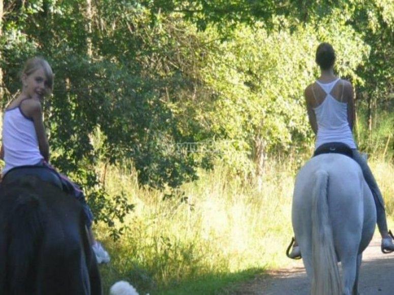 paseando con los caballos.
