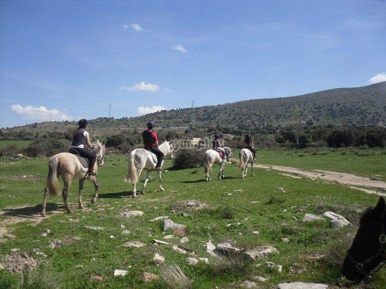 Paseando a caballo por el campo