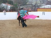 A real bullfighter