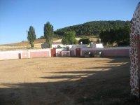 Capea en Salamanca