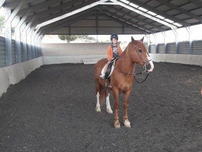 Cumpleaños con caballos para Niños Colmenar Viejo