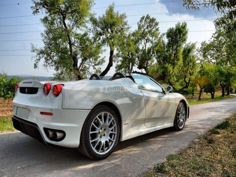 Parte trasera del Ferrari