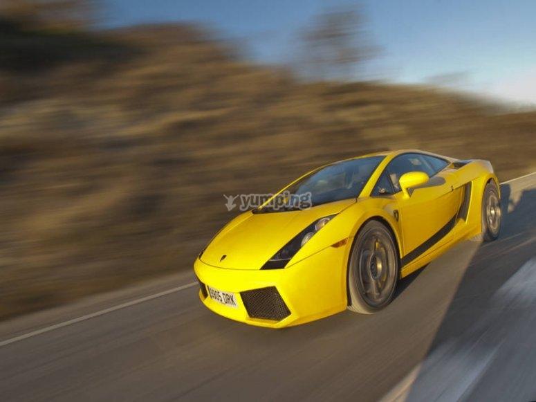 Pilota un Lamborghini Gallardo