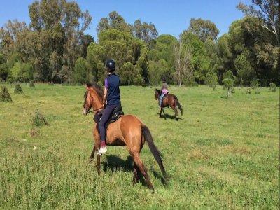 Doñana Horse Adventure