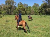 paseo a caballo por donana