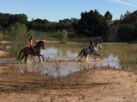 Montar a caballo en Andalucia
