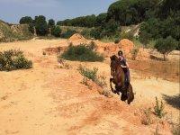aventuras a caballo en Huelva