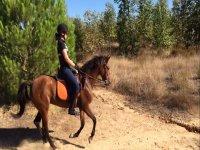 Montando a caballo en Donana