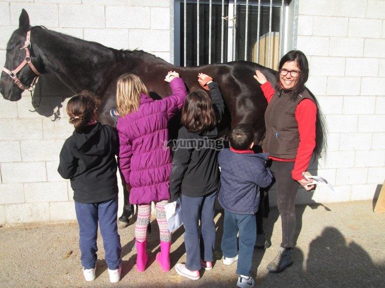 niñas con el caballo