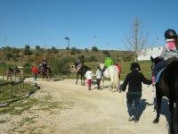 Campamento hípico en Sevilla verano un día