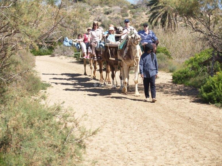 itinerarios con camellos