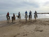 En la orilla con los caballos