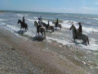 Saliendo del mar sobre los caballos