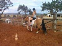 Clase de iniciacion de equitacion