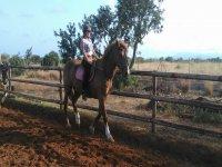 Mejorando posturas sobre el caballo