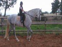Alumna de equitación sobre el caballo