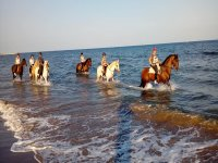 Metiéndose en el mar con los caballos