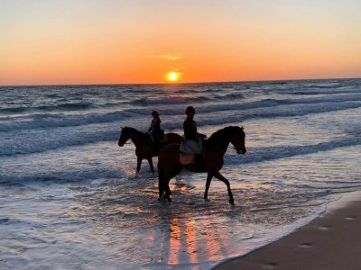 Equinos Sol y Playa Campamentos Hípicos