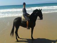 En la playa de Conil con el caballo