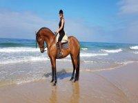 Acercándose a la orilla con el caballo