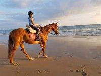 Jinete en la playa con el caballo