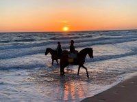 日落时在海岸上骑马