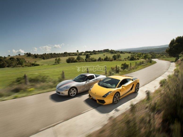 Drive both sports cars