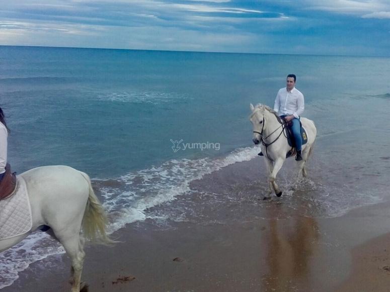 By a horse through the beach of Gandía