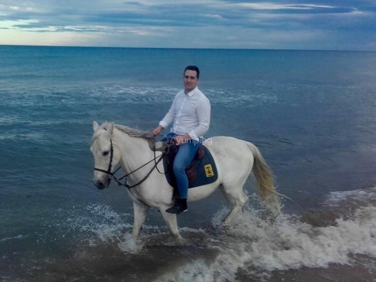 Horse riding in the coast of Gandia