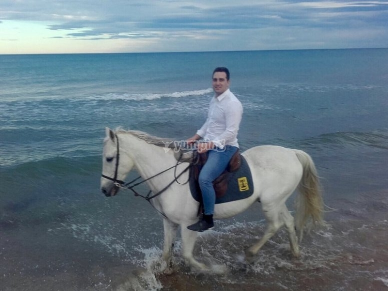 Excursion by a horse in the beach of Gandia