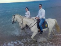 Horse Riding Tour in Gandía Beach, 2h