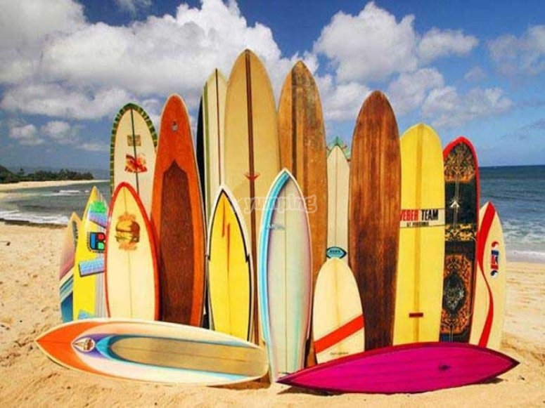 Our surfboards