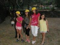 burros del campamento
