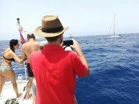 等待船上观赏海豚