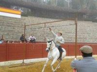 juegos con caballo