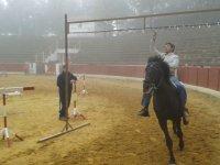 juegos con caballos