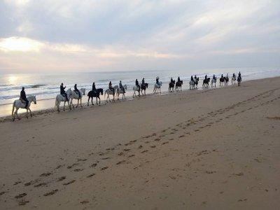 Equitazione a Natale per Doñana 2 h Bambini