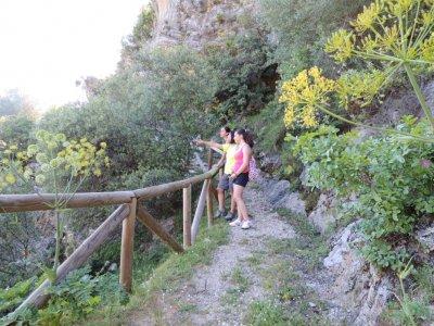 Escursione a Pinsapar e Sierra del Pinar 4 ore