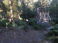 Corriendo hacia el interior del bosque